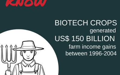 Apart from food security, a very important contribution of biotech crops has been to farmer income.