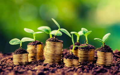 Times of India – New business opportunities for Investors in agriculture