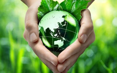 Mitigating plant health emergencies – prevention is better than cure