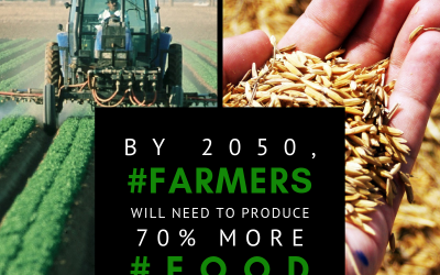 Embracing biotechnology and other crop innovations are essential to increase food production & preserve nutrition.