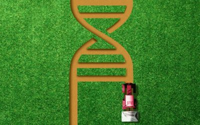 Innovation through gene-editing can address Climate Change