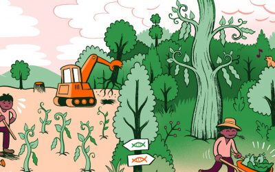 Genetic modifications Can Save Forest Biodiversity